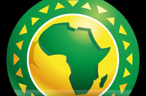 Article : CAN 2019 : Cabale contre le Cameroun ou cabale contre la CAF ?