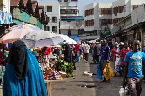Article : Mes premiers pas en solitaire dans un marché